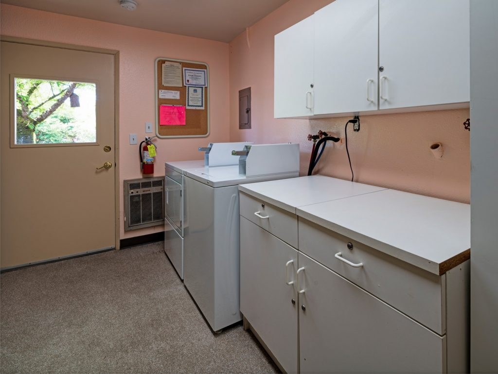 Laundry Facilities with washer and dryer and area to fold clothes or store detergent.