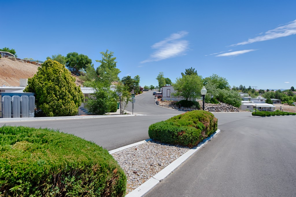 Maintained landscape with trimmed shrubs and tall green trees throughout the community. Wide, clean, paved streets.