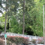 Beautiful scenery all around with walking paths through the community. Tall lush trees with a white bridge from parking lot into the wooded area.