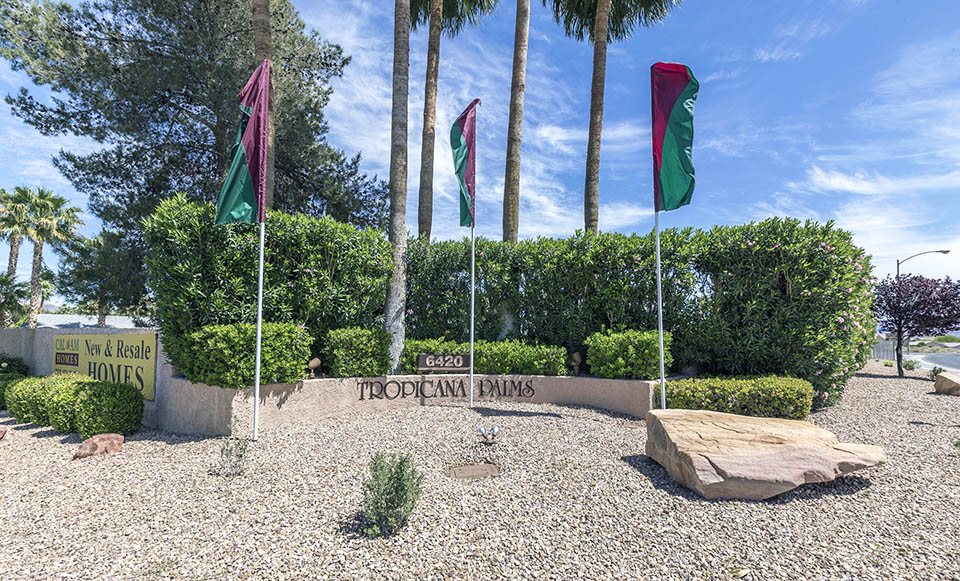 Three purple and green flags fly at entrance to Tropicana Palms, a 55 plus manufactured home community.