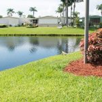 Palm Breezes Club, an active 55+ community, has manufactured homes that back up to the lake. Two iguanas sit near the waters edge.