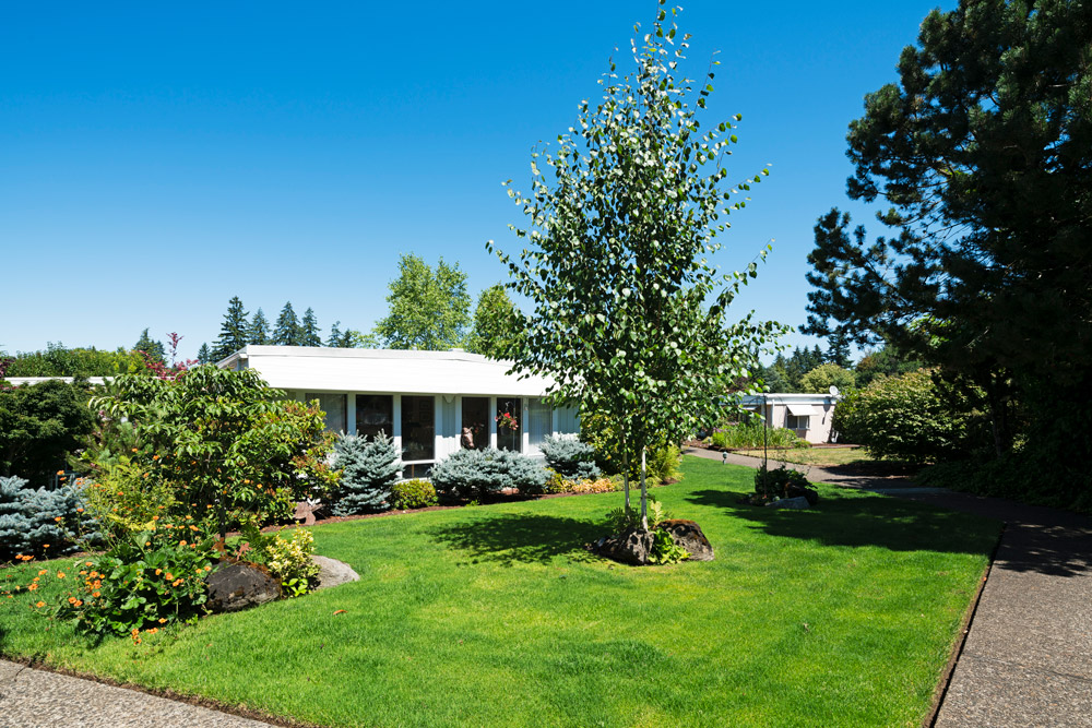 Royal Villas, a 55 plus manufactured home community with well maintained yards along walking paths
