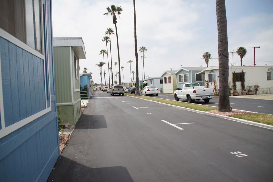 Beautiful entrance to the community with a palm tree divider and manufactured homes lining both sides of the streets.