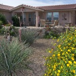 Desert landscape of rocks, shrubs, and cactus create great curb appeal in front of a Montesa home
