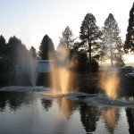 Pond with three small water fountains in middle shooting water up. Sun shines through trees onto water fountains.