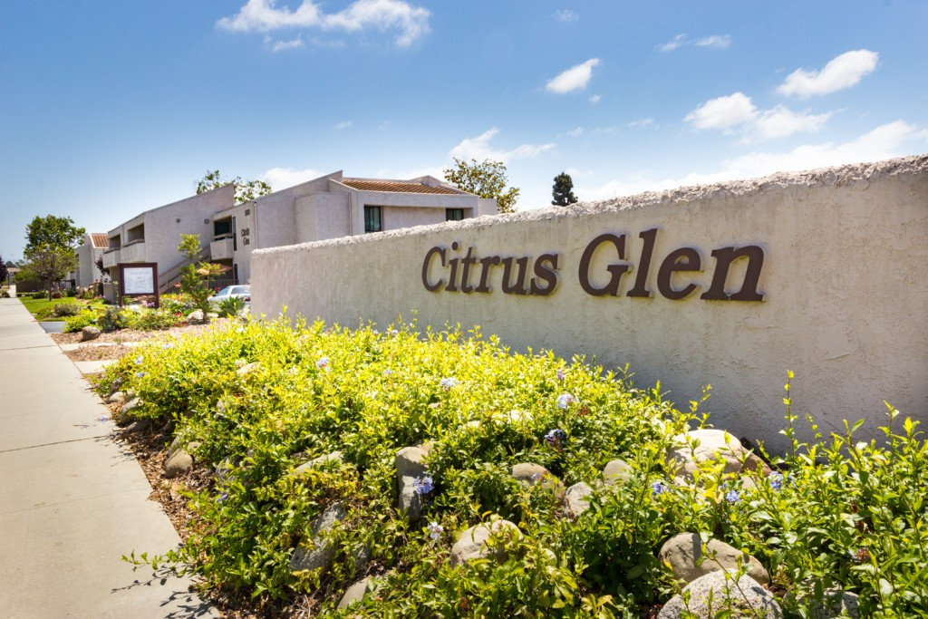 At the entrance of the complex, beautiful green plants sit in front of a Citrus Glen labeled cement wall.