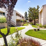 Clean and spacious walkways surrounded by green grass, benches, and well-kept trees create a community feel within the complex.