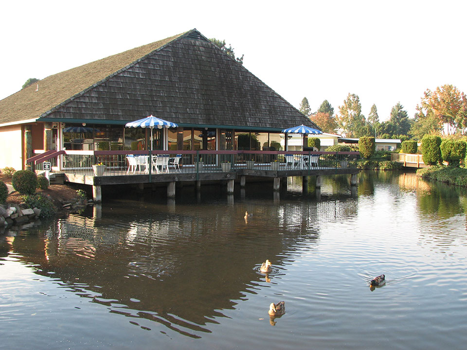 Lakeside Village, an all age manufactured home community with large pond. Ducks are swimming in pond
