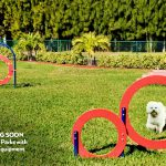 Dog running through circular equipment at one of the two dog parks being built at Naples Estates. Luscious green grass, and agility equipment throughout.