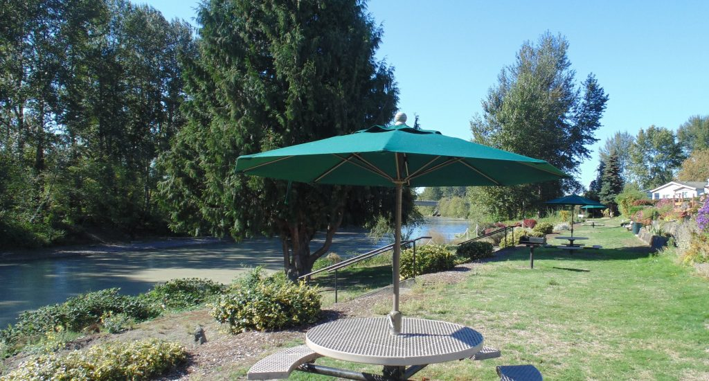 Waterfront grass area with picnic tables that overlook the Puyallup River.