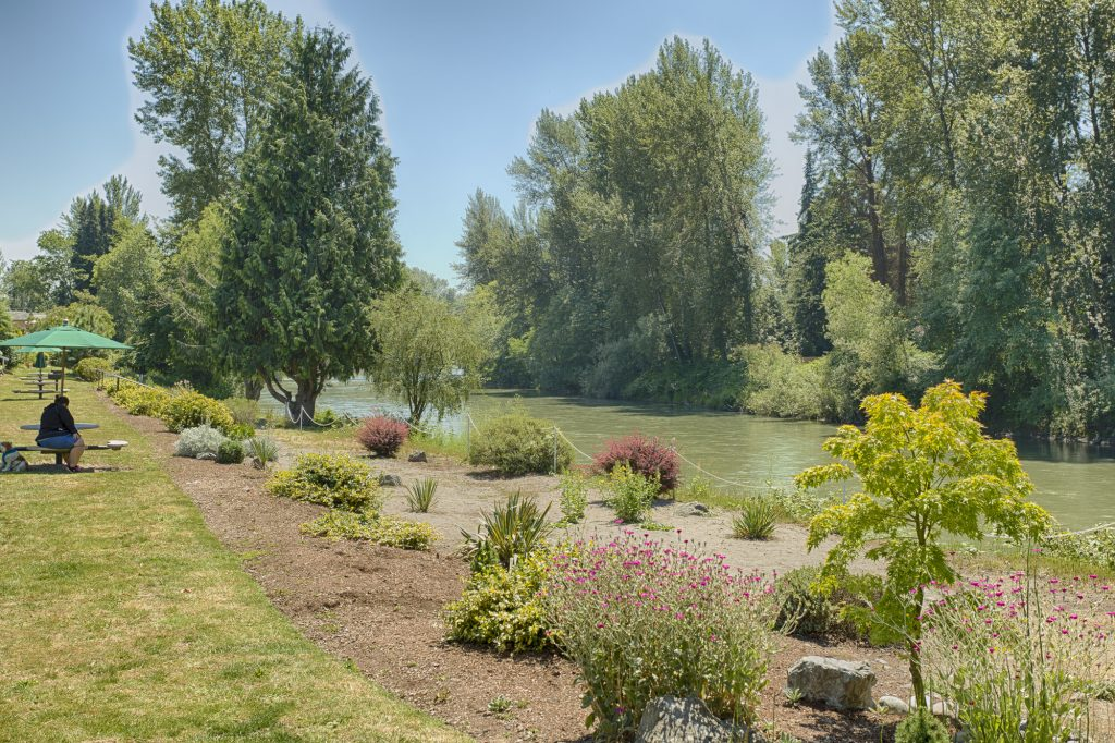 Peaceful waterfront view of Puyallup River, lined with beautiful tall trees and flowers. Benches and picnic tables also sit along the river.