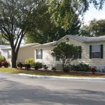 Wide clean paved streets and tall lush trees through out the community and with manufactured homes.