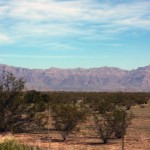 Cimarron Trails, a 55 plus, a manufactured home community offers stunning views of the Superstition Mountains.