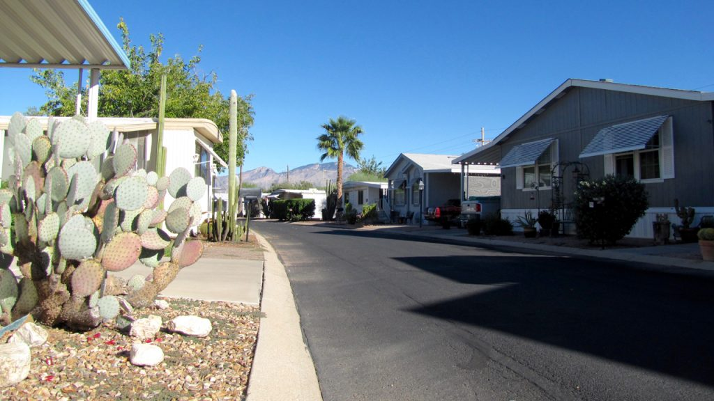 Quiet neighborhood with clean, paved streets. Manufactured home with cactus and palm tree for landscape.