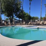 Pueblo Grande, in Mesa Arizona is an active adult 55plus community with a outdoor heated pool and spa with lounge chairs. Lush tall trees and palm trees surround.