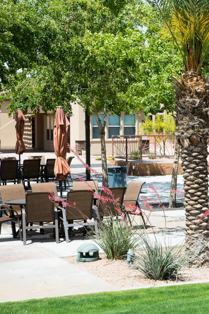 Beautiful outdoor picnic area with large picnic tables with umbrellas and multiple seating. Surrounded by well-maintained landscape and paved flooring.
