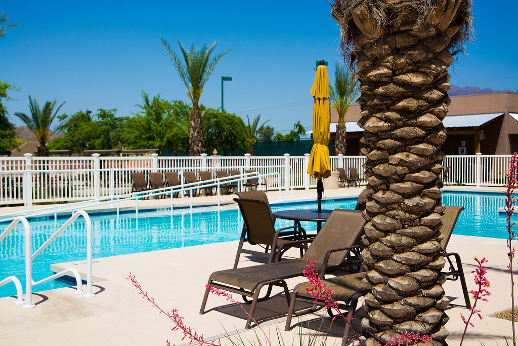 Luxury outdoor pool equipped with ample seating and tables with umbrellas. Well-maintained area with clean cut palm trees and nicely paved flooring.