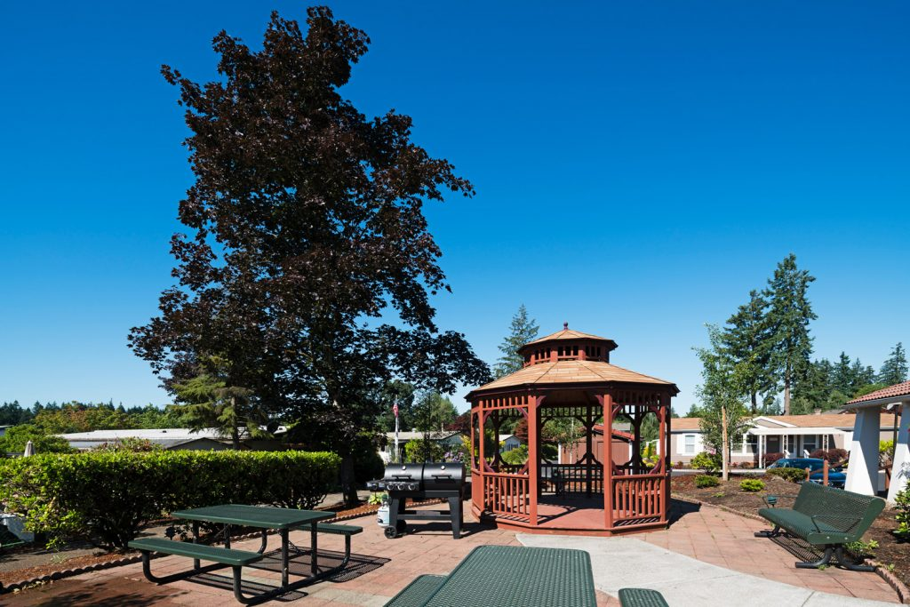 Barbeque and picnic area and benches. Wooden gazebo. Tall tree with dark purple leaves.