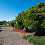 Landscaped walking paths with lush green trees and shrubs.
