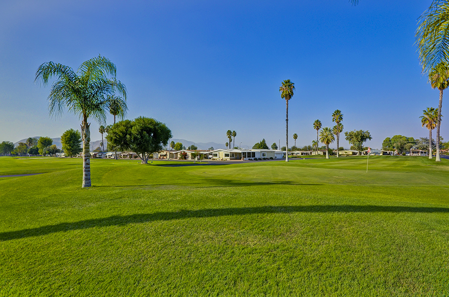 The well-maintained, green golf course with multiple palm trees surrounds the 55+ manufactured home community in sunny Southern CA.