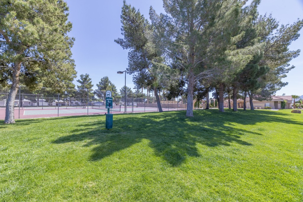 Grassy area for dogs to play. Next to tennis courts. Shady tall trees.