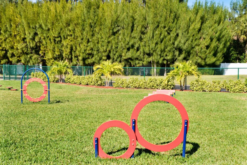 Lamplighter Village, an active 55 plus community, is pet friendly with a pet agility park that is enclosed and green grass.