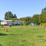 The pet park is enclosed for the pets to roam free and enjoy the agility course.