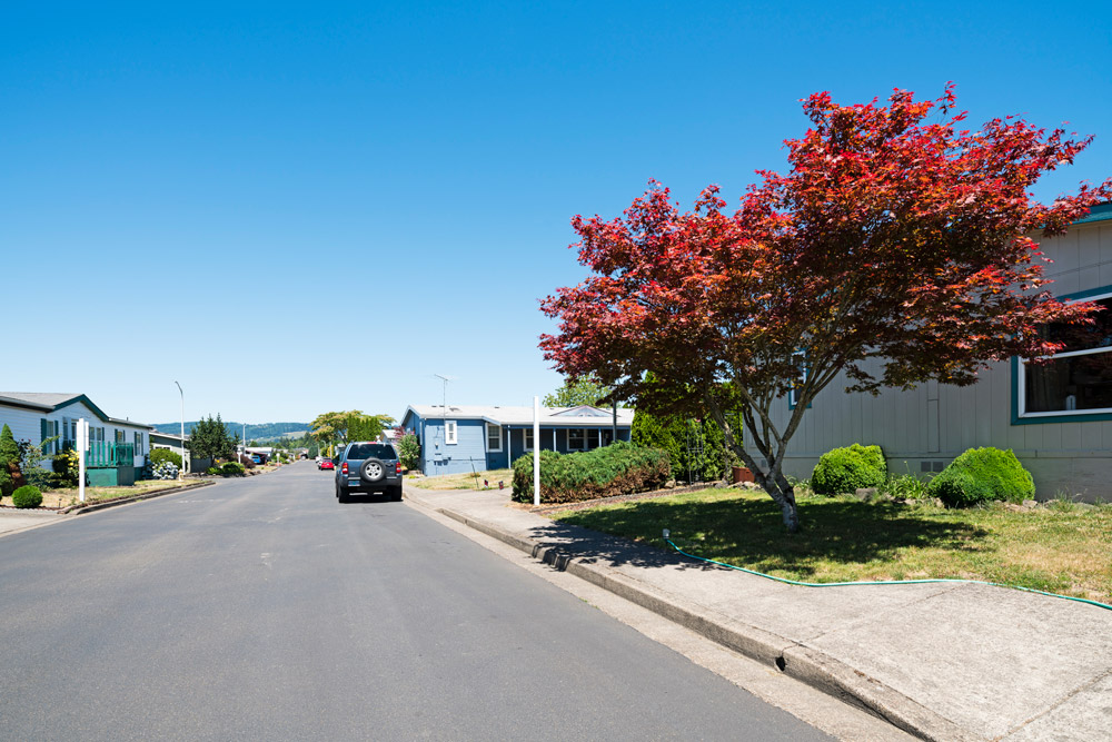 Springbrook, a community for all ages with a view of the Cascade mountains. Wide paved streets with sidewalks in front of the beautiful homes. Well maintained landscapes with luscious trees, green grass, and clean cut bushes and flowers.