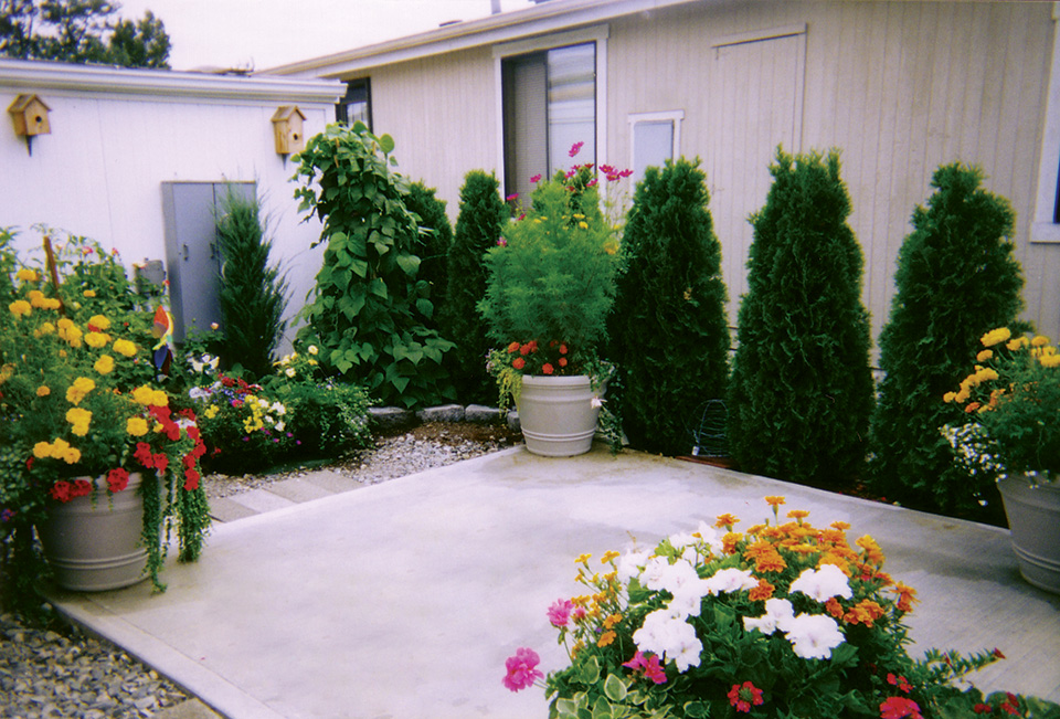 Beautiful outdoor patio filled with colorful flowers and green plants. Well-maintained, healthy, and aesthetically pleasing to the eye.