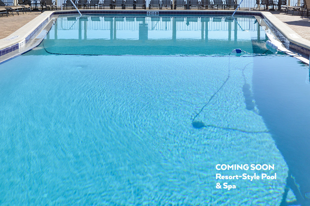 Large resort style pool and spa, which will be one of the many amenities to come at Naples Estates.