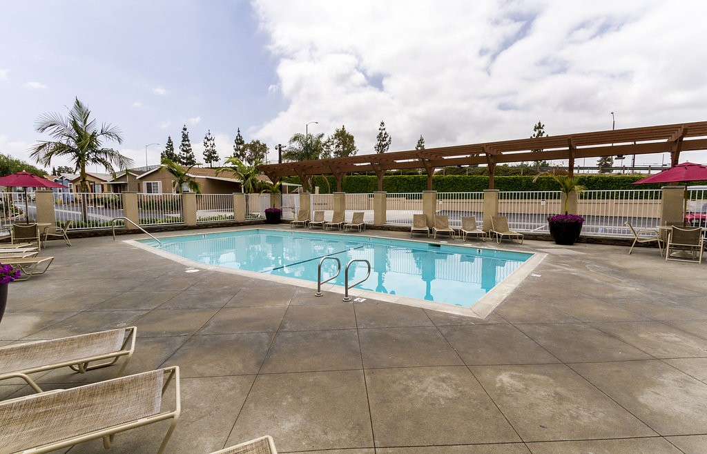 Enclosed outdoor community pool surrounded by lounge chairs for residents to relax under the sun. Open area with ample walking room around the pool.