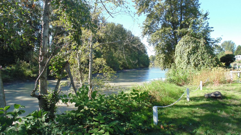Beautiful view of the Puyallup river, sitting waterfront to Golden Rose community. Green and luscious landscape.