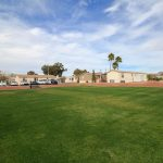 Large grassy open field