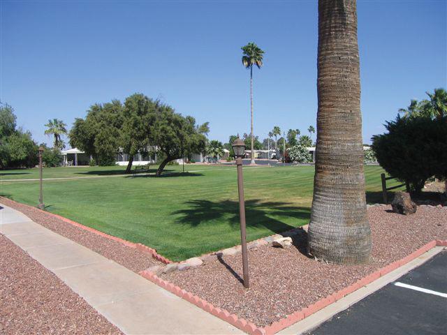San Estrella, an all age community, has a large grassy field area