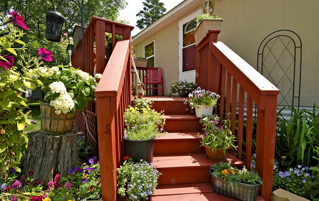 Some families that live at Fridley Terrace, an all age community decorate their yards with lots of plants up the steps to the porch.