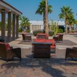 Cushioned seating sits outside the office surrounded by Palm trees.