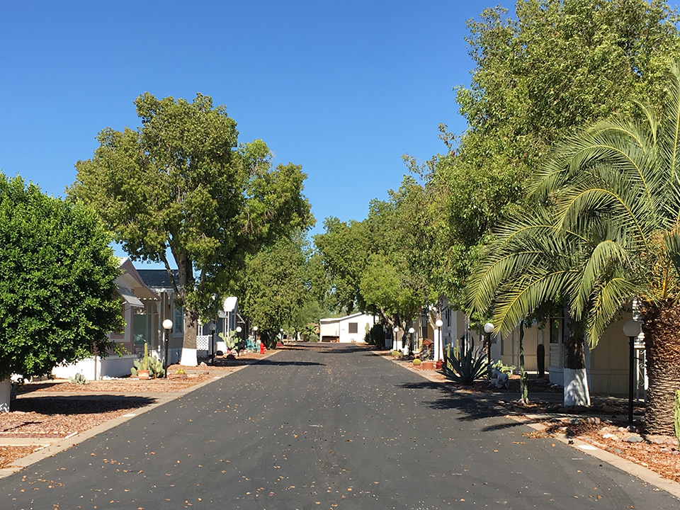 Wide, clean paved streets lined with lush trees.